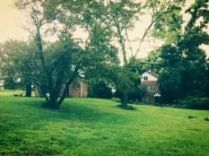 The Willis House