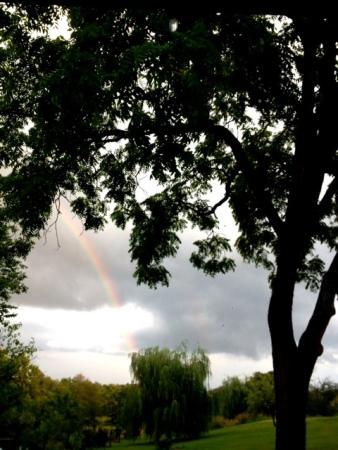 Despite the storm we seek the rainbow